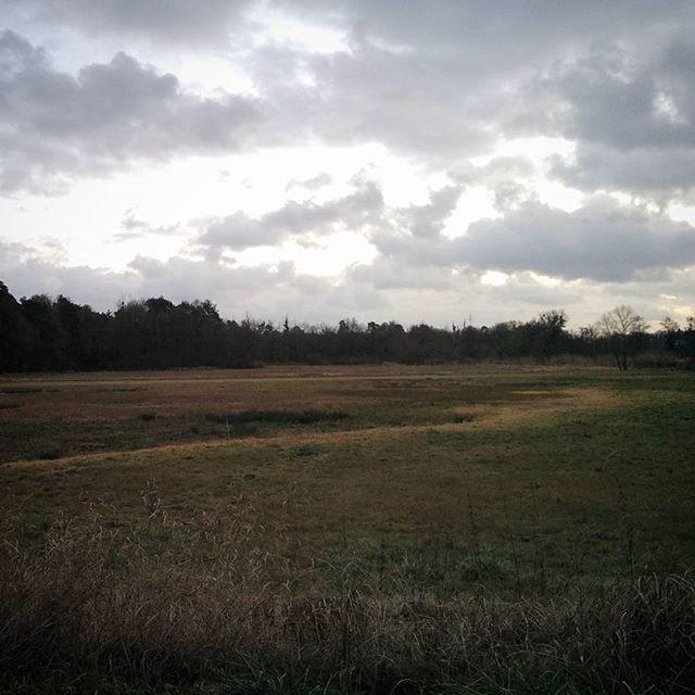 Wolken und Wiese